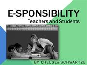 E-sponsibility--Slideshow--PLN 4