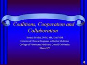 Coalitions, Cooperation and Collaboratio