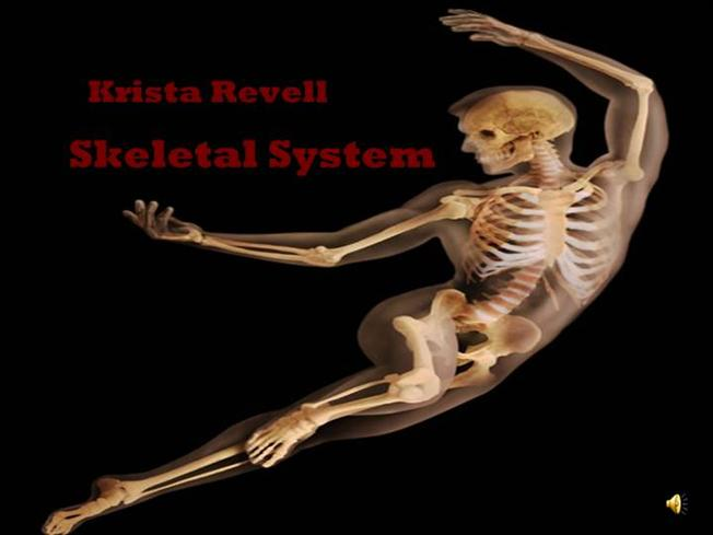 skeletal system ppt |authorstream, Skeleton