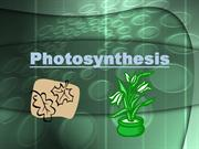Photosynthesis-Blackboard