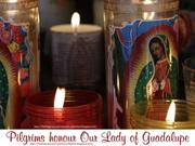 Pilgrims Honor Our Lady of Guadalupe