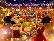 Disney Stroller Rental - Christmas in Disney World