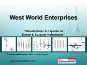 West World Enterprises New Delhi India