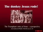 The Donkey Jesus Rode