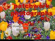 384-Patchwork photographs_English_French