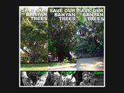 SAVE LIVES, SAVE BANYAN TREES