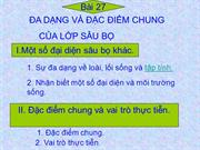 Bi 26 a dng v c im chung ca lp su b