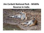 Jim Corbett National Park - Wildlife Reserve in India