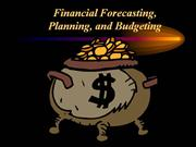 Financial  Planning,  Forecasting  &  Budget