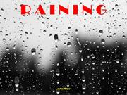 183 Raining by Dirval Chareti