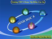 Bi 42 Thc hnh - Tm hiu chc nng (lin quan n cu to) ca tu