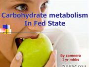 carbohydrate metabolism in fed state
