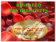 RESEALED ERYTHROCYTES CHATAP