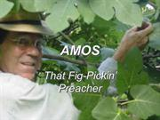 Invitation to the Old Testament 19: Amos