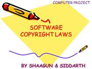 Software copyright laws