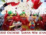 2012 Chinese Lunar New Year celebrations