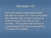 Reindeer - 4R