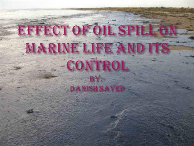 Oil Effects Effects of Oil Spill And Its