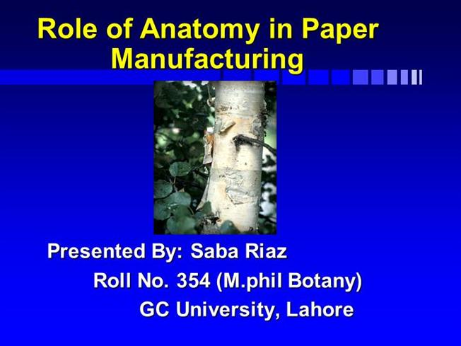 Role Of Anatomy In Paper Manufacturing Authorstream