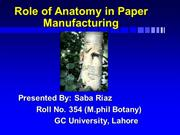 Role of Anatomy in Paper manufacturing