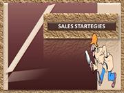 Sales Strategy of our organization & areas for improvement