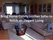 Bring Home Comfy Leather Sofas to Relish an Elegant Living