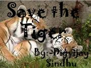 Save the tiger (2)
