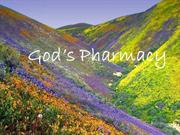 God's Pharmacy(2)