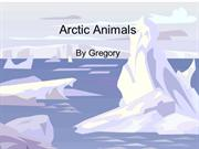 Arctic Animals Greg