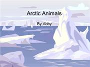 Arctic Animals Abby