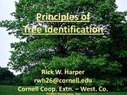 Principles of Tree ID (2012)