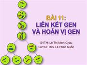 Bi 11 Lin kt gen  v hon v gen