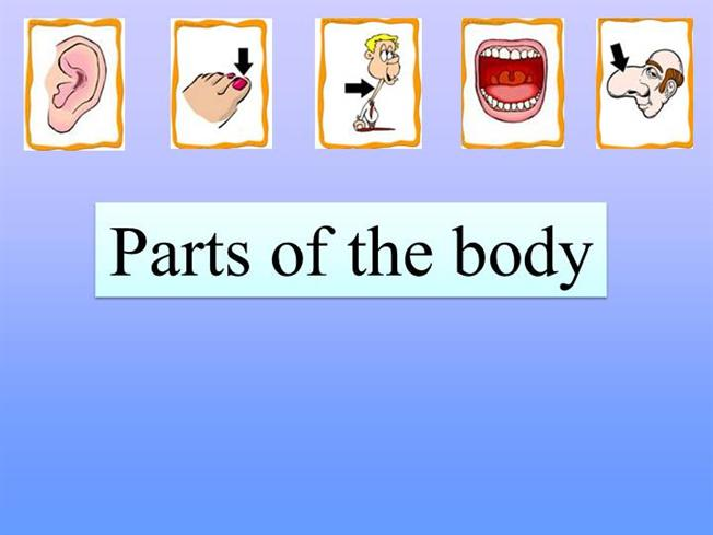Body: powerpoint presentation and game.