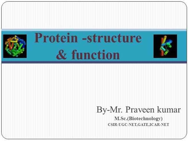 Protein -Structure  amp Function Keratin Structure And Function Ppt
