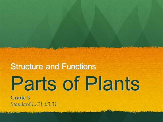 Plants and their functions powerpoint.