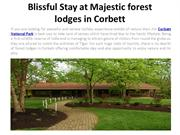Blissful Stay at Majestic forest lodges in Corbett