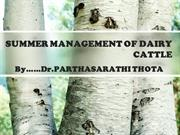 SUMMER MANAGEMENT of DAIRY CATTLE