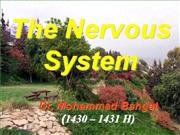 nerves sys