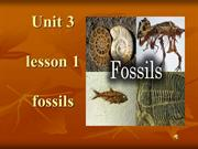 fossils.pp