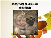 Importance of Animals in