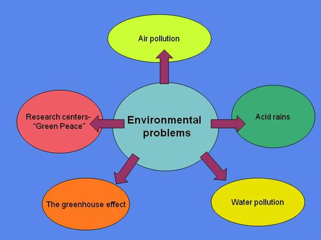 essay on environmental issues in india