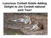 Luxurious Corbett Hotels Adding Delight to Jim Corbett national park T
