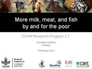 The More Meat Milk and Fish CRP and its implementation in Egypt