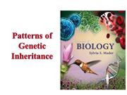 Patterns of Genetic Inheritance B Sc III Unit IV