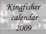 Kingfisher calendar 2009