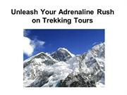Unleash Your Adrenaline Rush on Trekking Tours