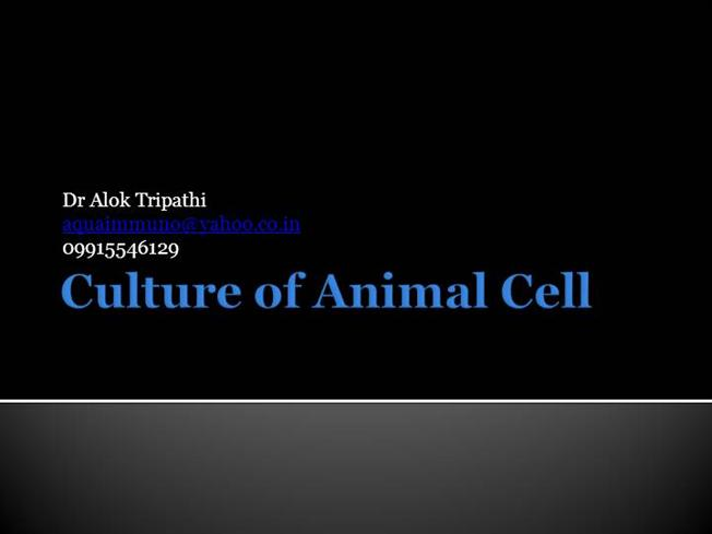 Culture of Animal Cell |authorSTREAM