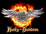 HARLEY DAVIDSON