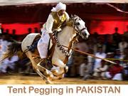 Tent Pegging in PAKISTAN