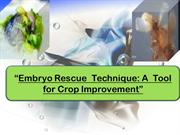 Embryo Rescue  Technique A  Tool for Crop Improvement